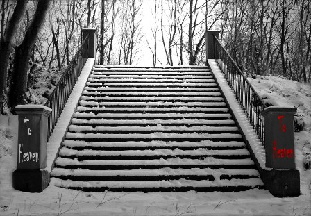 Stairway to Organisational Heaven?